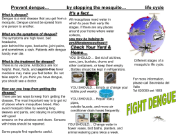 BROCHURE DENGUE JOSE - MOSQUITO SPREAD DISEASES