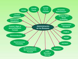 1. Administración de bosques - Proyecto Gobernanza Forestal