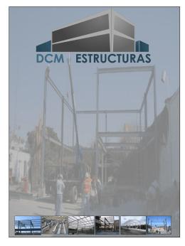 PPT - dcm estructuras