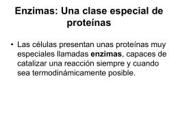 Enzimas - campvs.cl