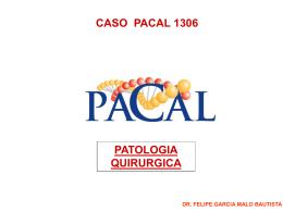 CASO PATO 1306