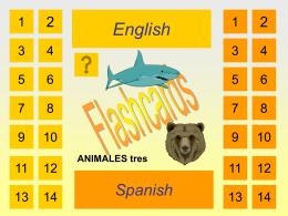 Los animales 3