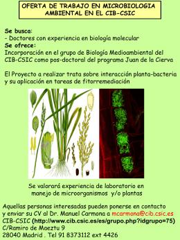 Postdoc_ CIB_CSIC