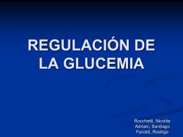 Regulación de la glucemia.
