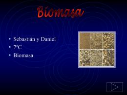 ¿Qué es biomasa?