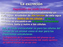 La excreción - EPET Nro. 3
