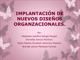 IMPLANTACIÓN DE NUEVOS DISEÑOS ORGANZACIONALES