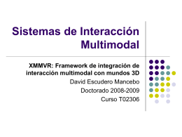 Notas sobre el lenguaje XMMVR