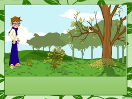 Las plantas clase 10 - El Rincón de Miss Hilda