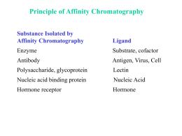 Cromatografía de afinidad (Marta Mazzetti)