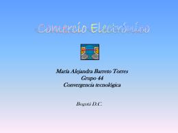 comercio electrónico - COMERCIO ELECTRONICO 2010