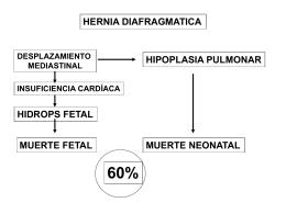 Diapositiva 1 - Dr. Fernando L. Heinen