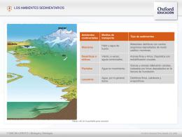 Ambientes sedimentariosT5