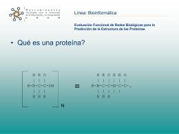 Evaluación funcional de redes biológicas para la predicción de la