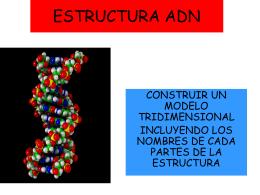 clase 4 -estructura