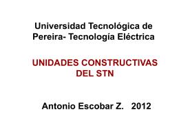 UNIDAD TÍPICA - Universidad Tecnológica de Pereira