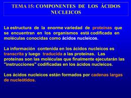 TEMA 15: COMPONENTES DE LOS ÁCIDOS NUCLEICOS La