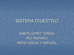 SISTEMA_DIGESTIVO_AARON