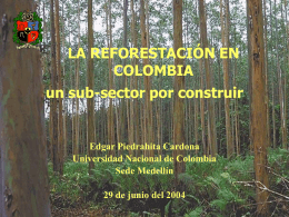 ppt - Universidad Nacional de Colombia