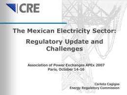 The Mexican electricity market situation