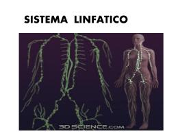 Sistema linfatico - Colegio Los Aromos