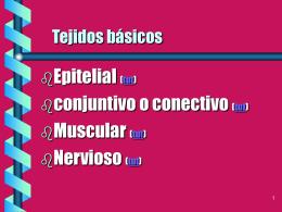 Tejidos básicos