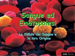 019b_Sangue