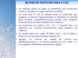 INDICADORES METODOS ANALITICOS parte 2