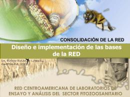 MISION-CONSTITUCION DE LA RED-Dr.Rolando