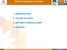 firco biomasa - Proyecto de Energía Renovable