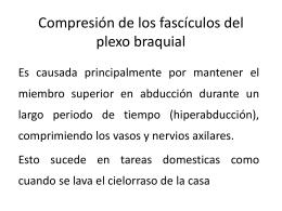 Compresión de los fascículos del plexo braquial