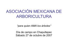 para quien AMA los árboles - Asociación Mexicana de Arboricultura