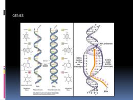bas.moleculares (5435392)