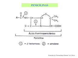 estructura química básica de penicilinas y cefalosporinas