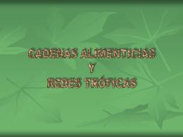 CADENAS ALIMENTICIAS.