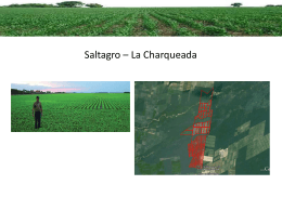 Saltagro - La Charqueada