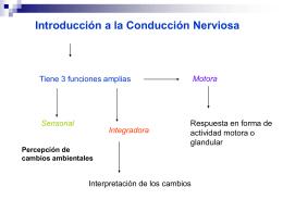 Introducción a la Conducción Nerviosa