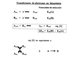 Archivo de clase Fotosíntesis 2003