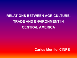 The Relation between Trade and Development of Sustainable