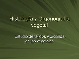 Histología y Organografía vegetal