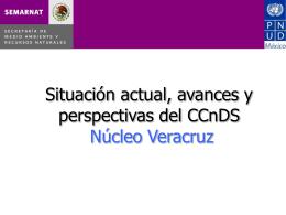 Informe-Veracruz
