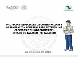 Presentación Proyectos Especiales Tabasco 2013
