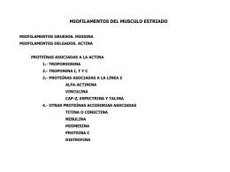 miofilamentos del musculo estriado