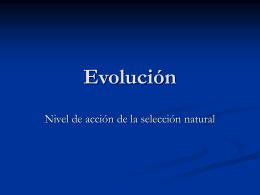 Evolución 7 - prof.usb.ve.