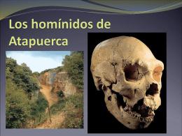 Los homínidos de Atapuerca - ies claudio sanchez albornoz
