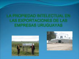 """PROYECTO """"URUGUAY ORGÁNICO"""""""
