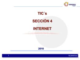 4. (TICS 2010 2) INTERNET