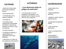 ¡Los Tiburones son en peligro de extinción!