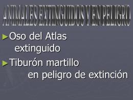 animales extintos y en peligro