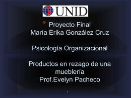 Proyecto integrador María Erika González Cruz Psicología